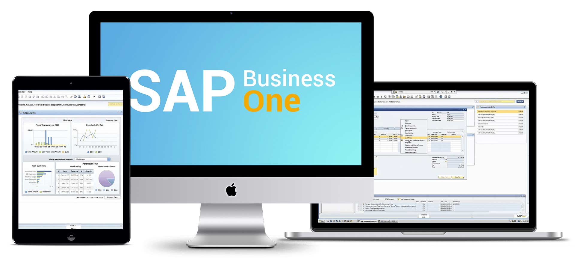 Computador com o ERP SAP Business One